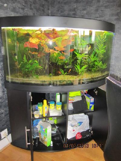 aquarium juwel 350 l angle aquarium juwel 350 l angle entrevoisins com petites. Black Bedroom Furniture Sets. Home Design Ideas